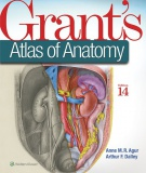 Grant's Atlas of Anatomy